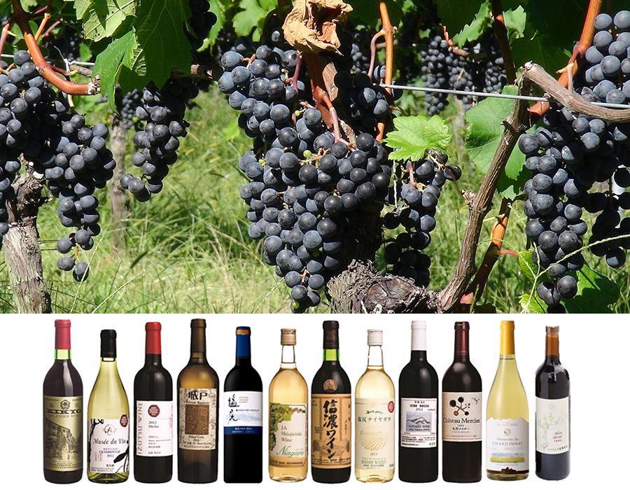 塩尻ワインの歴史 イメージ写真