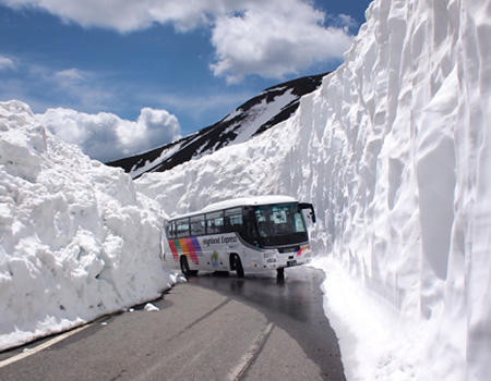 鞍岳春山バス 写真