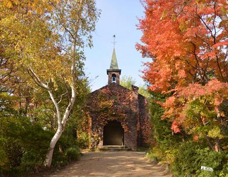 秋の碌山美術館 イメージ写真