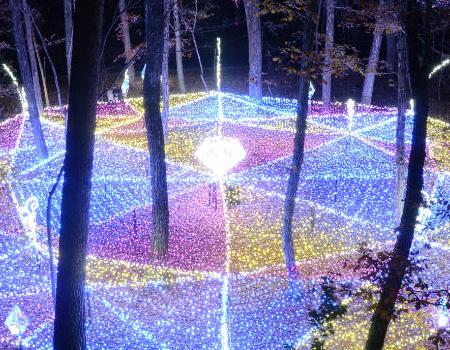 光の森のページェント(大町・松川地区) イメージ写真